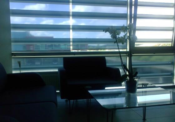 solemlux_roletaisk_1589803222-c4afd5e1c74313da8e275fd1ef44e51b.jpg